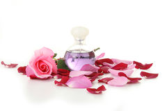 Weiblichkeit, Flasche Duftstoff und rosafarbene Blumenblätter Lizenzfreies Stockfoto