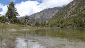 Weich wellenartig bewegendes Wasser stock footage