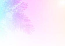Weiche bunte abstrakte Beschaffenheit der Blattnahaufnahme Lizenzfreies Stockbild
