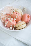 Weiche Farbe-macarons Stockfoto