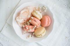 Weiche Farbe-macarons Stockfotografie