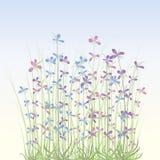 Weiche Frühlingsblumen vektor abbildung
