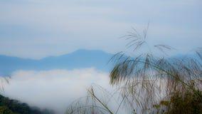 Weiche Gefühlsansicht der Landschaft, des Nebels, der Wolke und des Berges Stockbilder