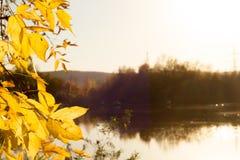 Weiche Herbstlandschaft, reflektiert im ruhigen Wasser stockfoto