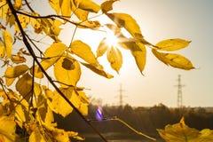 Weiche Herbstlandschaft, reflektiert im ruhigen Wasser stockfotografie
