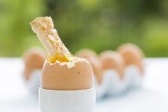 Weiche kochte Ei im Eierbecher mit Toast auf Tabelle Stockfoto