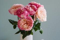 Weiche rosafarbene Rosen Lizenzfreie Stockbilder
