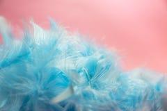 Weiche und Unschärfe reden blaues Pastellcolore Türkis des selektiven Fokus an Lizenzfreie Stockfotos