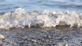 Weiche Welle des Meeres auf dem sandigen Strand stock footage