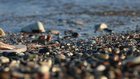Weiche Welle des Meeres auf dem sandigen Strand stock video