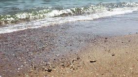 Weiche Welle von Meer auf sandigem Strand, sonniger Tag Nahaufnahmeschießen, selektiver Fokus stock video footage