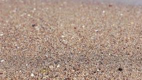 Weiche Welle von Meer auf sandigem Strand, sonniger Tag Nahaufnahmeschießen, selektiver Fokus stock footage