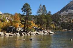Weicher amerikanischer Herbst Stockfoto