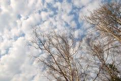 Weicher Frühlingshimmel mit Wolke Lizenzfreie Stockbilder