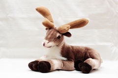 Weicher Toy Reindeer Stockfotos