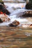 Weicher Wasserfallfluß mit Felsen im Wald in der langen Belichtung Stockfoto