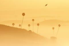 Weiches Bild von Landschaftsschichten lizenzfreies stockbild