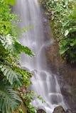 Weiches flüssiges Wasser des Wasserfalls Stockbild