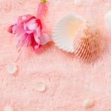 Weiches Konzept des Badekurortes mit empfindlicher rosa Blumenfuchsie, Muscheln Stockfoto