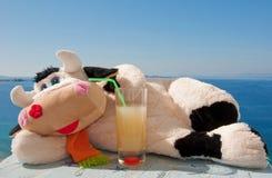 Weiches Spielzeug - schüchtern Sie das Lügen in der Sonne mit Saft ein Lizenzfreies Stockbild