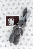 Weiches Spielzeugkaninchen, das auf einer Decke mit Sternen liegt Lizenzfreie Stockfotografie