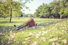 Weichzeichnungsfahrrad auf Gras mit Blumenhintergrund Stockbild