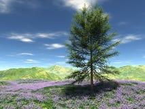 Weide bij heuvel met één boom Stock Afbeelding