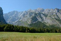 Weide, bos en bergen Stock Foto