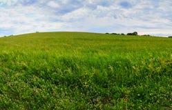 Weide in de lente in Hudson Valley-gebiedsny Royalty-vrije Stock Foto