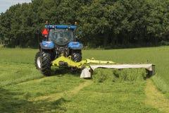 Weide, die mit blauem Traktor mäht Stockfoto