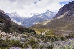 Weide en bergen in het Nationale Park van Huascaran stock fotografie