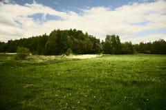 Weide en heuvel Stock Foto