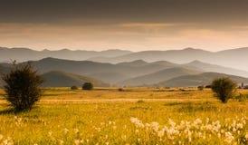 Weide en heuvels Royalty-vrije Stock Afbeeldingen