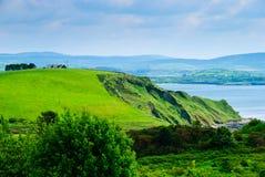 Weide en klip door overzees, Ierland Royalty-vrije Stock Afbeeldingen