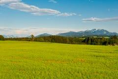 Weide im Bayern Stockbilder