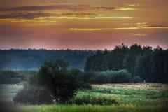 Weide, Landschapsfotografie, Muurkunst, Aarddruk, Huisdecor, Tarwegebieden, Art Photography, Druk, Muurbeeld, Plattelander Royalty-vrije Stock Foto's