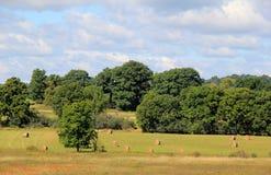 Weide met balen van hooi in landelijk platteland Stock Foto