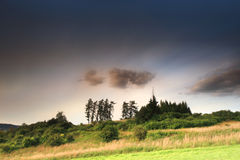 Weide met bomen en wolken royalty-vrije stock afbeelding