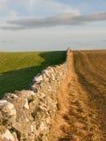 Weide met natuurlijke steenmuren Stock Foto