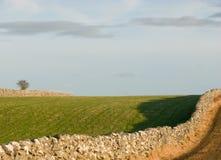 Weide met natuurlijke steenmuren Royalty-vrije Stock Fotografie