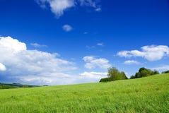 Weide met wolken. stock afbeeldingen
