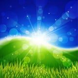 Weide met zon en blauwe hemel. royalty-vrije illustratie