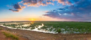 Weide met zonsondergang Royalty-vrije Stock Afbeeldingen