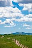 Weide mit Wolken Stockbild