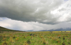 Weide onder de wolken Stock Fotografie