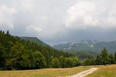 Weide und Berge Stockfotos