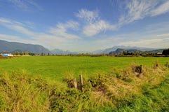 Weide und Berge im Herbst Lizenzfreies Stockfoto