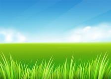 Weidegebied De zomer of de lenteaardachtergrond met groen graslandschap vector illustratie