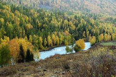 Weideland mit Fluss Stockfoto