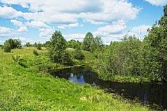 Weidemeer dichtbij het dorp van Chernukha Stock Afbeelding